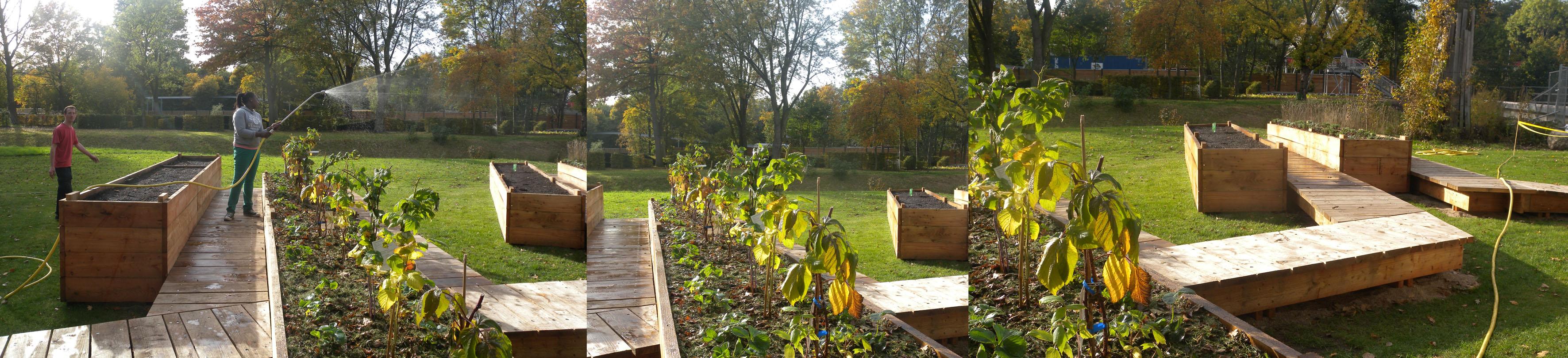 Heimat Garten Okt 2 kl