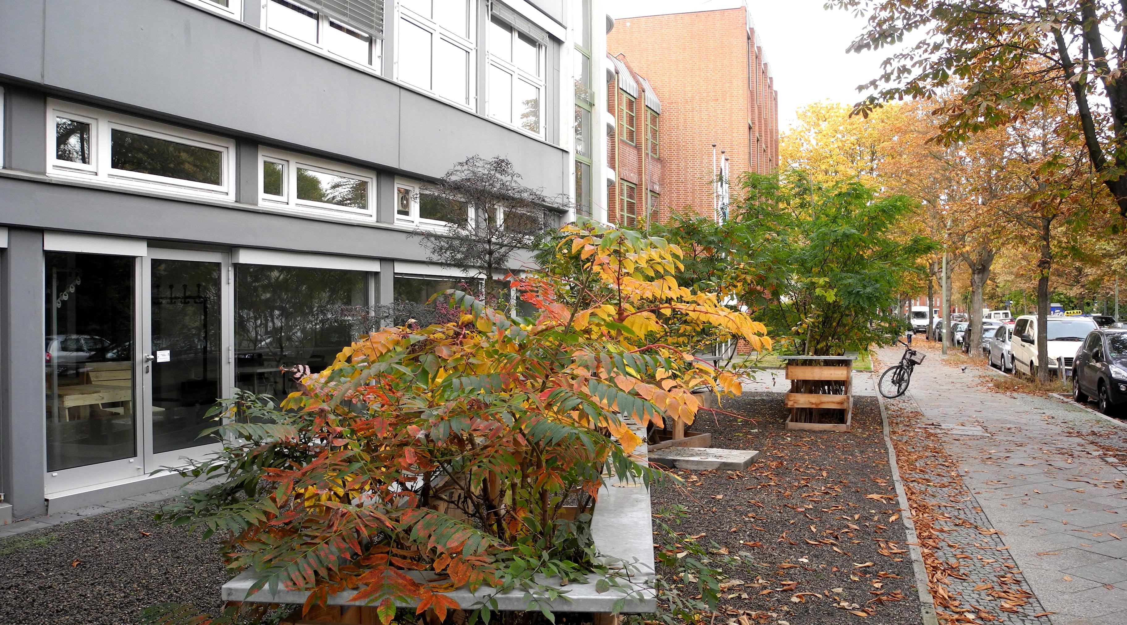 Herbst 13